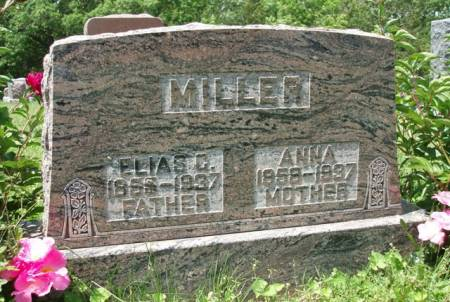MILLER, ELIAS GIBBS - Madison County, Iowa | ELIAS GIBBS MILLER