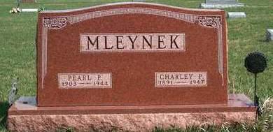 MLEYNEK, CHARLEY PAUL - Madison County, Iowa | CHARLEY PAUL MLEYNEK