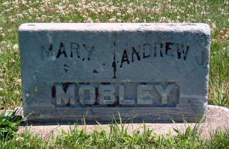 TEAGUE MOBLEY, MARY POLLY - Madison County, Iowa | MARY POLLY TEAGUE MOBLEY