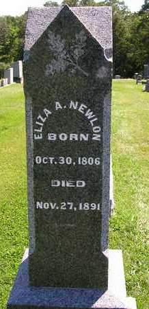 NEWLON, ELIZA ANN - Madison County, Iowa | ELIZA ANN NEWLON