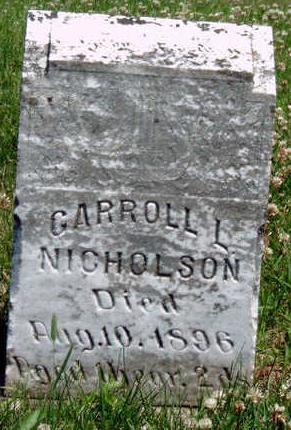 NICHOLSON, CARROLL L. - Madison County, Iowa | CARROLL L. NICHOLSON