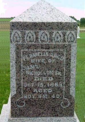 NICHOLSON, PERMELIA - Madison County, Iowa | PERMELIA NICHOLSON
