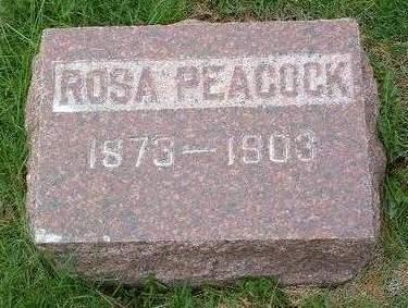 PEACOCK, ROSA - Madison County, Iowa | ROSA PEACOCK