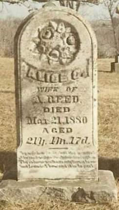 REED, ALICE CATHERINE - Madison County, Iowa | ALICE CATHERINE REED