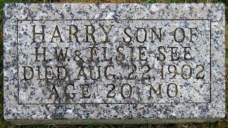 SEE, HARRY WILLIAM - Madison County, Iowa | HARRY WILLIAM SEE