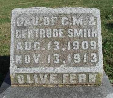 SMITH, OLIVE FERN - Madison County, Iowa | OLIVE FERN SMITH