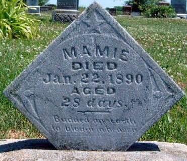 STEELE, MAMIE - Madison County, Iowa | MAMIE STEELE