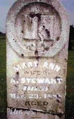 STEWART, MARY ANN - Madison County, Iowa   MARY ANN STEWART