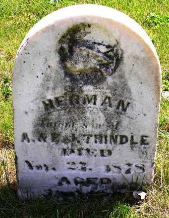 TRINDLE, HERMAN - Madison County, Iowa | HERMAN TRINDLE