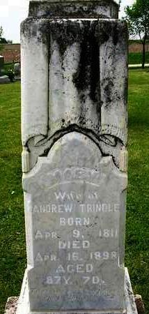 TRINDLE, MARY ANN - Madison County, Iowa | MARY ANN TRINDLE