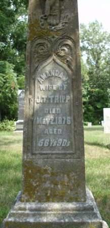 TRIPP, AMANDA J. - Madison County, Iowa | AMANDA J. TRIPP