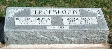 GROVES TRUEBLOOD, BERTHA IONE - Madison County, Iowa | BERTHA IONE GROVES TRUEBLOOD