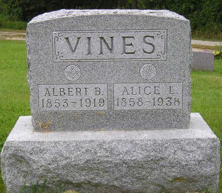VINES, ALBERT BRISBANE - Madison County, Iowa | ALBERT BRISBANE VINES