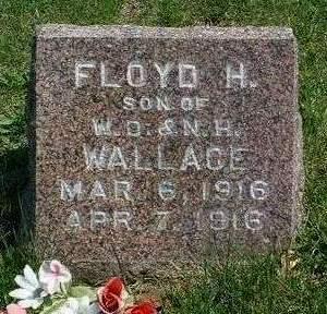 WALLACE, FLOYD H. - Madison County, Iowa | FLOYD H. WALLACE