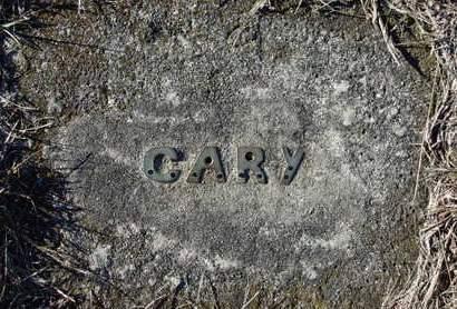 WAUGH, CARY GILBERT - Madison County, Iowa | CARY GILBERT WAUGH