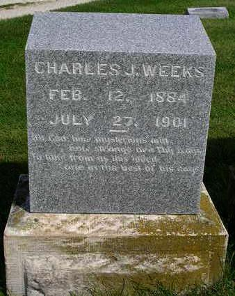 WEEKS, CHARLES JAMES - Madison County, Iowa | CHARLES JAMES WEEKS