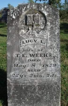 WEEKS, LUCY LOUISA - Madison County, Iowa   LUCY LOUISA WEEKS