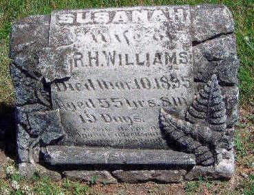 WILLIAMS, SUSANAH - Madison County, Iowa   SUSANAH WILLIAMS