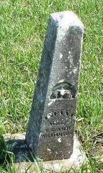 WILLIAMSON, NANCY R. - Madison County, Iowa | NANCY R. WILLIAMSON