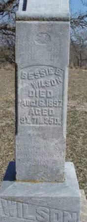 WILSON, BESSIE BLANCHE - Madison County, Iowa | BESSIE BLANCHE WILSON