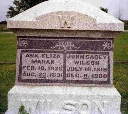 WILSON, ANN ELIZA - Madison County, Iowa | ANN ELIZA WILSON