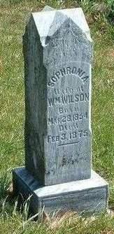 WILSON, SOPHRONIA - Madison County, Iowa | SOPHRONIA WILSON