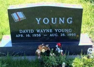 YOUNG, DAVID WAYNE - Madison County, Iowa | DAVID WAYNE YOUNG