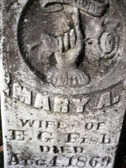 FISH, MARY A. - Mahaska County, Iowa | MARY A. FISH