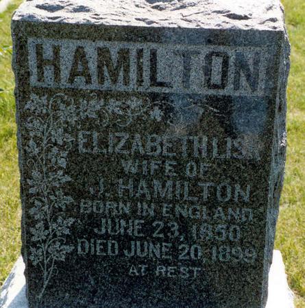 LISK HAMILTON, ELIZABETH - Mahaska County, Iowa | ELIZABETH LISK HAMILTON