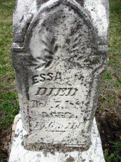 STEEN, ESSA M. - Mahaska County, Iowa | ESSA M. STEEN