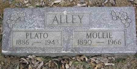 COFFEY ALLEY, MOLLIE ELLEN - Marion County, Iowa | MOLLIE ELLEN COFFEY ALLEY