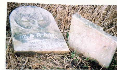 PERRY BRIDGES, SARAH - Marion County, Iowa | SARAH PERRY BRIDGES