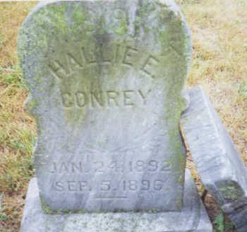 CONREY, HALLIE - Marion County, Iowa | HALLIE CONREY