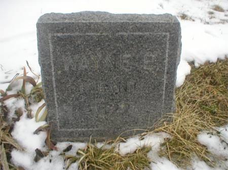 ELWOOD, WAYNE E. - Marion County, Iowa | WAYNE E. ELWOOD