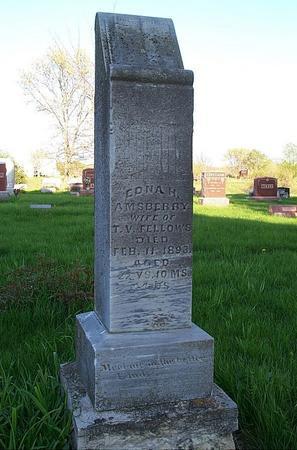 AMSBERRY FELLOWS, EDNA H - Marion County, Iowa | EDNA H AMSBERRY FELLOWS