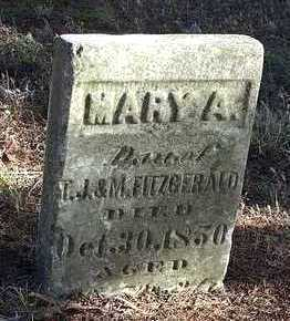 FITZGERALD, MARY A - Marion County, Iowa | MARY A FITZGERALD