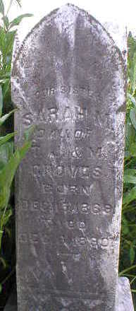 GROVES, SARAH M. - Marion County, Iowa | SARAH M. GROVES