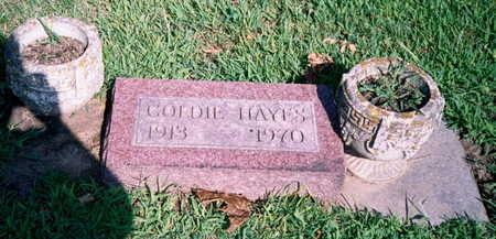 DEHEER HAYES, GOLDIE - Marion County, Iowa | GOLDIE DEHEER HAYES