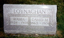 LOYNACHAN, DAVID M. - Marion County, Iowa | DAVID M. LOYNACHAN