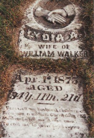 WALKER, LYDIA ANN - Marion County, Iowa | LYDIA ANN WALKER