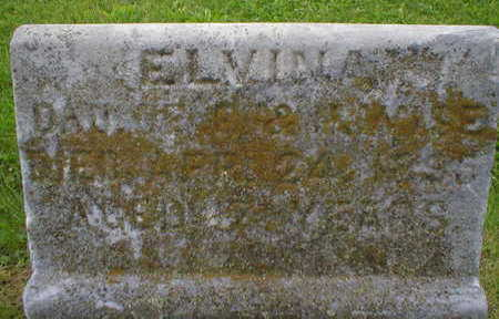 WISE, ELVINA - Marion County, Iowa | ELVINA WISE