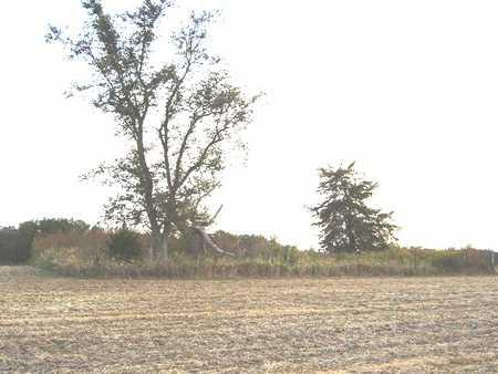 BALLARD, CEMETERY - Marshall County, Iowa | CEMETERY BALLARD