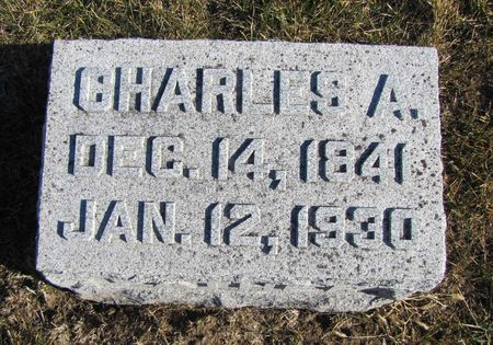 BARNES, CHARLES A - Mills County, Iowa | CHARLES A BARNES