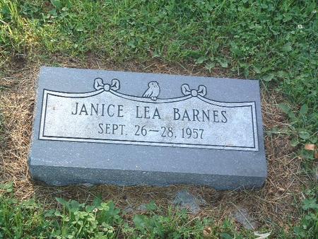BARNES, JANICE LEA - Mills County, Iowa   JANICE LEA BARNES