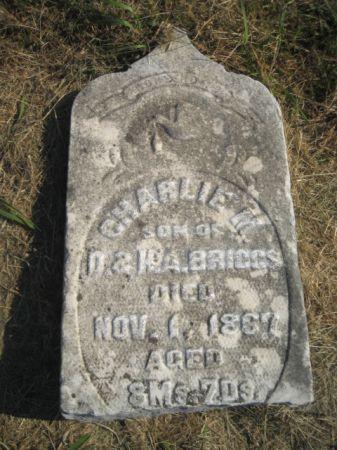 BRIGGS, CHARLES M. - Mills County, Iowa | CHARLES M. BRIGGS