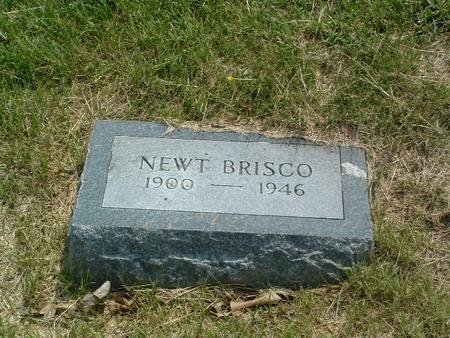 BRISCO, NEWT - Mills County, Iowa | NEWT BRISCO
