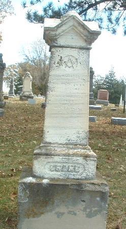 CRANE, JOHN WESLEY - Mills County, Iowa   JOHN WESLEY CRANE