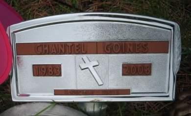 GOINES, CHANTEL - Mills County, Iowa | CHANTEL GOINES
