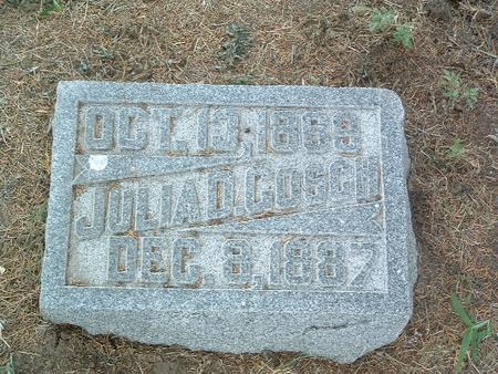 GOSCH, JULIA D. - Mills County, Iowa | JULIA D. GOSCH