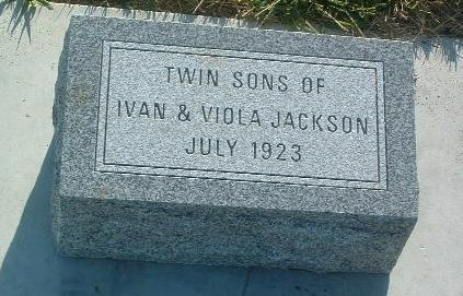 JOHNSON, TWIN SONS - Mills County, Iowa | TWIN SONS JOHNSON